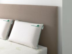 Oreillers Latex Naturel sur lit