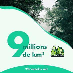 """Et si ceux qui font des pubs nullissimes investissaient dans la reforestation à la place ?  #Lematelasvert s'engage pour la planète avec un arbre planté à chaque vente 🌳 avec l'#ONF et se refuse de faire des publicités inutiles.  D'après """"Science"""", 9 millions de kilomètres carré de forêts pourrait être planté sur Terre sans empiéter sur les activités humaines ce qui piégerait les deux tiers de CO2 accumulé depuis la révolution industrielle, 1760   Nous avons les solutions, qu'attendons-nous ?  Le premier acte citoyen est de consommer local 🇫🇷 avec des entreprises dont les valeurs sont plus proches de l'environnement 🌎 💚  #matelas #literie #naturel #bio #madeinfrance"""
