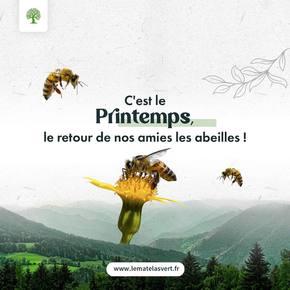 Venez petites #abeilles venez 🐝 L'équipe #lematelasvert souhaite un doux #printemps à ses formidables clients! N'oubliez pas vos semis #kokopelli 🌿🌿🌿🌿 pour récolter du bonnet du #bio 🥕🌽🥦🥬🌶