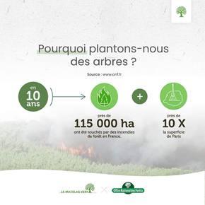 Voilà pourquoi la marque de #literie la plus #ecologique de #France plante un #arbre à chaque vente avec l'#ONF 🌳🌲🌳🌲🌳🌲🌳🌲🌳🌲
